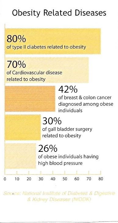 Obesity chart (2)