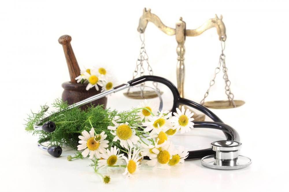 naturopathic doctor -, Human body